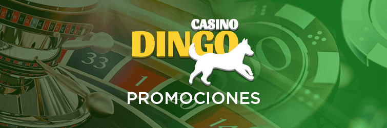 dingo casino|bono de bienvenida|casino en línea